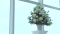 結婚式場 27126725