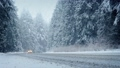 Cars Drive Through Forest In Snowstorm 27209347