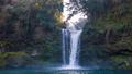 慈恩の滝 27361334
