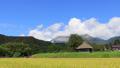 稲穂と茅葺き小屋のある風景 9月 タイムラプス 27521781