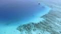 座間味島の海 27674187