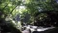 雲井の滝 奥入瀬渓流 新緑の動画 27678302