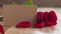 玫瑰 玫瑰花 花瓣 27736623