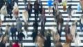 東京タイムラプス 汎用 大都会東京の交差点を行き交う群衆 交差点 ズームイン 27785218