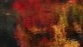 11月 川面に写り込む紅葉のさざ波 遠江の秋 27882929