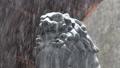 諏訪大社 雪景色 27896998
