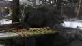 諏訪大社 雪景色 27897002