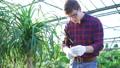 gardening, cultivation, flower 28010111