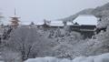 1月 雪の清水寺舞台 京都の冬景色 28069179