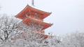 1月 雪の清水寺三重塔 京都の冬景色 28069180