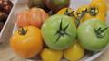 Organic fresh tomatoes 28080091