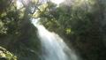 滝 ながれ 流れの動画 28085264