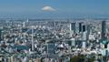 东京 日本 城市 28112677