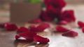玫瑰 花瓣 卡 28116108