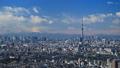 東京タイムラプス 東京都心街並全景 東京スカイツリー 富士山に流れる雲 FIX 28239457