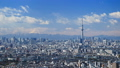 東京タイムラプス 東京都心街並全景 東京スカイツリー 富士山に流れる雲 ティルトアップ 28239459