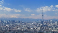 東京タイムラプス 東京都心街並全景 東京スカイツリー 富士山に流れる雲 ズームイン 28239460