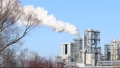 industrial pollution tree branches 28525009