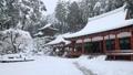 1月 積雪の長命(ちょうめい)寺 近江の冬景色 28691201