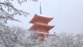 1月 雪の清水寺三重塔 京都の冬景色 28691204