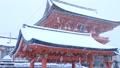 1月冬 雪の伏見稲荷大社楼門 京都の雪景色 28691205