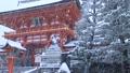1月冬 雪の伏見稲荷大社楼門 京都の雪景色 28691209