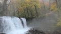 11月 銚子大滝 紅葉と降雪の奥入瀬渓流 28691222
