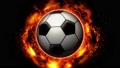 sport, sports, ball 28775866
