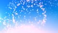 cherry blossom, cherry tree, cherry blossom background 29174158