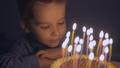 お誕生日 バースデー 誕生日の動画 29223336