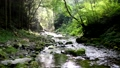 A stream of the Akikawa Valley 29257234
