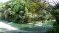 奥多摩 渓流 清流の動画 29259868