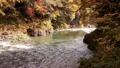 奥多摩 渓流 渓谷の動画 29259891