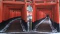 1月冬 雪の伏見稲荷大社千本鳥居 京都の雪景色 29372789