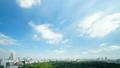東京タイムラプス 全景 超ワイド 新宿御苑と都心全景 大空たっぷりコピースペース FIX 29391872