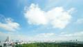 東京タイムラプス 全景 超ワイド 新宿御苑と都心全景 大空たっぷりコピースペース パン 29391875