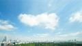 東京タイムラプス 全景 超ワイド 新宿御苑と都心全景 大空たっぷりコピースペース ズームイン 29391876