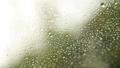 Rain drops on the window on rainy day. Green 29444647