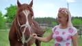 Beautiful woman feed a brown horse on the meadow 29482126
