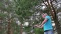 釣り フィッシング 魚採りの動画 29482147