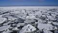 能取岬と流氷で覆われたオホーツク海 29507356