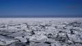 流氷で覆われたオホーツク海 29507359