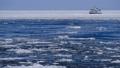 砕氷船と流氷 29507526