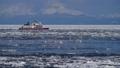 砕氷船と流氷 29507529