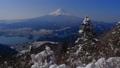 雪の舞う新道峠第二展望台からの富士山 29513668