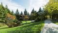 Park backyard area 29599479