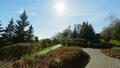 Park backyard area 29599480