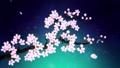 満開になる桜の花びら 緑背景 29601246