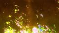 炎 ファイヤ 背景の動画 29604395