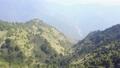空拍 台灣 南投 玉山國家公園 鹿林山 Yushan National Park Lulin 29650491